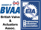 Member of British Valve & EIA