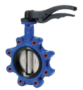 Tapper & Lugged Butterfly Valve