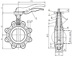 Tapped Lugged Butterfly Valves
