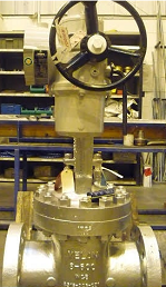 Gate Valve WCB Body With Electric Actuator