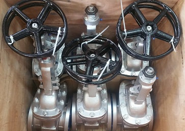 WCB Gate Valves Trim 8